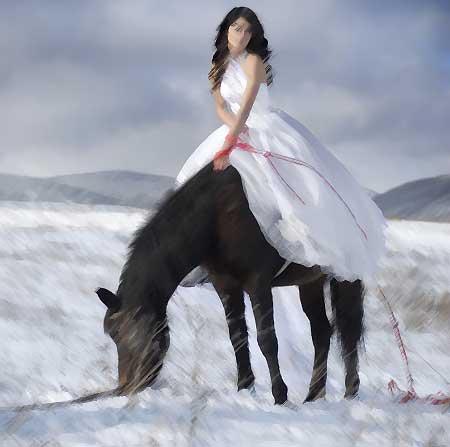 lady-on-horse