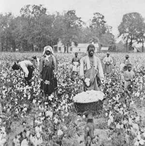 Walrath_Powder-Keg_sharecroppers